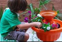 Garden Ideas - Contain Yourself / About pots and the things we grow in them. / by Linda Darby