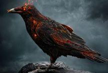 The other side / Black Magic / Los que hacen mal uso de la fuerza oscura y caen en la magia negra
