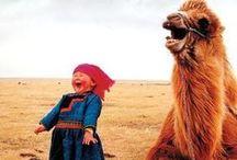 Animals Make Me Smile / by Julissa Montijo