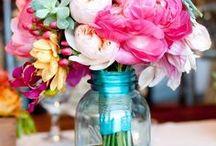 flowers / by Jennifer Wagg