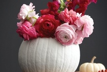 Celebrate Autumn! / Autumn; Fall; leaves; pumpkins; Halloween; Thanksgiving / by Sarah Hulbert Style