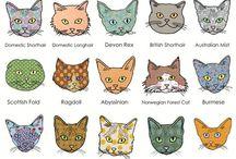 For Felines / by Dena Younkin