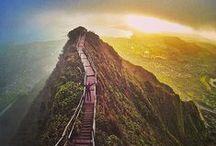 Hawaï / Travel Destination • July 22 - August 5 2016