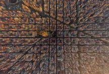My Barcelona / by Aurora Lorente