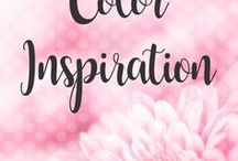 POSH // Color Inspiration / Colors for a beautiful website experience.