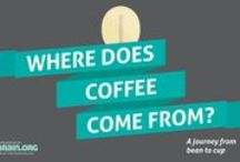 Infographics (Learn about Coffee with great visuals!)