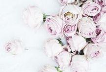 Beautiful Flowers / by Rachel W. Miller