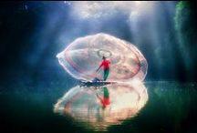 Incredible! / by Kathy Kaysen Oaks