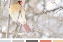 { winter chirp } / by Design Seeds