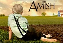 Amish / by Darlene McDonald