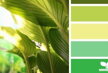 { leaf palette } / by design seeds