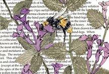 Jill Poole Prints / by Abi Poole