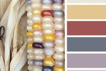 { color corn } / by Design Seeds