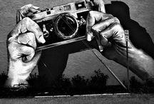 bansky / by chrissy hoffmann