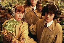 ▲H a r ry P o t t e r▲ / Things, only PotterHeads will understand.