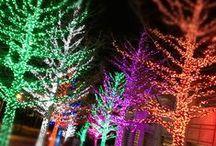 CHRISTMAS / Everything CHRISTMAS!!!  / by Alicia Thomas