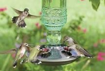 Birdhouses/Feeders / by Tami Robinson