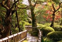 Beautiful Gardens / by Tami Robinson