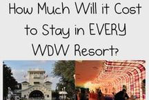 Planning for Disney / Planning a family vacation to Walt Disney World can be difficult.  Look no further for personal insights, tips, tricks, and what to do to make your Disney trip a success.  All pins from Disney Expert: www.temporarytourist.com