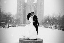 Wedding Ideas / Fairytales