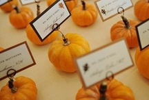 Fall Weddings / Theme and decoration ideas for a fall wedding