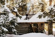 cabin in the woods / by sentimentaljunkie