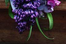 Les Fleurs Magnifique