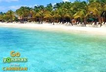 Go Yonanas in the Caribbean / ***Contest ended 4/30/15*** Yonanas is giving away a dream Caribbean vacation for 2 to Harbour Village Beach Club in Bonaire!   / by Yonanas