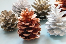 Autumn winter natural crafts / You can't beat natural decorations such as pine cones, wreaths, cinnamon sticks, dried oranges, and Christmas spices. They often smell great too! Check out my new Natural Christmas board for even more ideas.