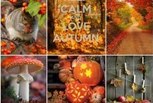 Autumn ♥ Oktoberdots / Autumn is my favorite season, I love the colors of autumn, cozy sweaters but not to cold yet and most of all the smell of fallen leafs.