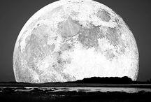 ✨Under Moon Light✨ / Moon