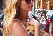 Celebrities & Their Pets