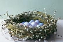 Easter  / by Virpi Janhunen