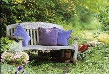 Sitting in the garden / by Virpi Janhunen