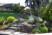 Landscaping / by Brian Coleman