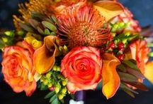 Wedding Flowers / BRIGHT, HAPPY, and lots of color. Preferably with yellow/orange 2-tone flowers.  / by Kelly Fletcher