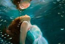Underwater Photography / by Laurie Leal