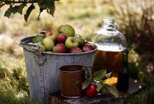 Autumn / Fall : Mood . Style . Inspiration