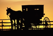 AMISH Obsession / I find everything about the AMISH fascinating..here are photo's I have pinned that just make me smile and enjoy their simple life being amish