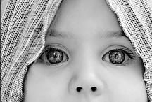 Captured Beauty. / by Alisha Haydn