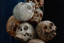 ART REF 54 - Skulls & Bones / See also 'Day of the Dead' board. / by Ange Lee