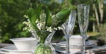 Glassware / Glisten and glow with our designer glassware and accessories.
