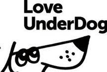 We <3 Love Underdogs / Love Underdogs is a non-profit charity who re-home abused and neglected Dogs from Romania in the UK. We love this animal charity and support them! Follow this board to find out how we are helping Love Underdogs!   http://www.loveunderdogs.org/