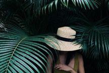 ✣ Hats ✣