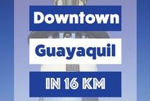 Guayaquil, Ecuador. / Guayaquil, officially Santiago de Guayaquil, is the largest and the most populous city in Ecuador, with around 2.69 million people in the metropolitan area, as well as the nation's main port.