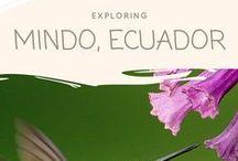 Mindo, Ecuador.