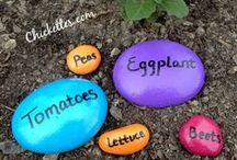 Gardening and outdoor decor / Gardening brings me joy! Love fresh veggies and fruits!!! I also love outside and decorating it!! I wish I had enough time to do all theses cool ideas!!! / by Joetta Lund