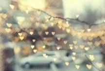 Photography Love / by Ligia Bremerman