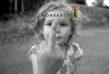 Moms Against Monsanto / Head over to www.facebook.com/MomsAgainstMonsanto for a blooming community of like-minded mamas striving to keep our children and their planet safe and healthy.