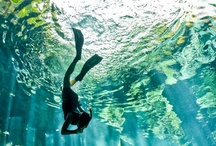 Underwater / I just love all the world that under the water so many mysterious creatures